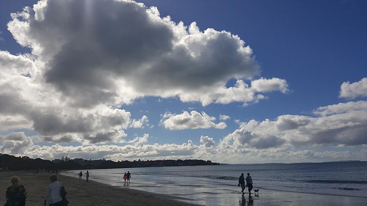 해변가 오클랜드