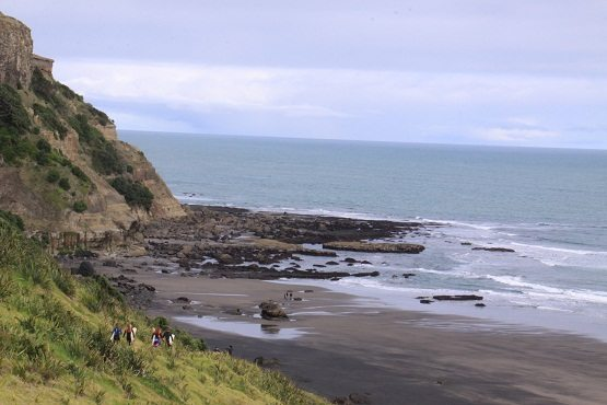 Surfers at Muriwai beach near Auckland