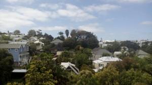New-Zealand-homestay