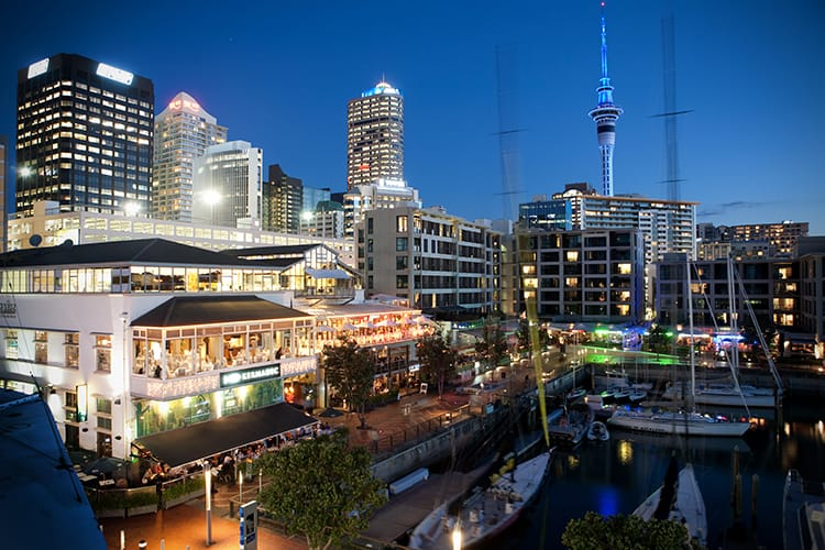Auckland nightlife viaduct harbour