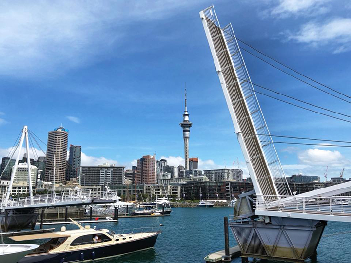 Auckland harbour in New Zealand