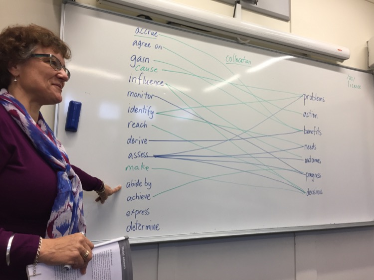 English teacher teaching English collocations in Auckland, New Zealand