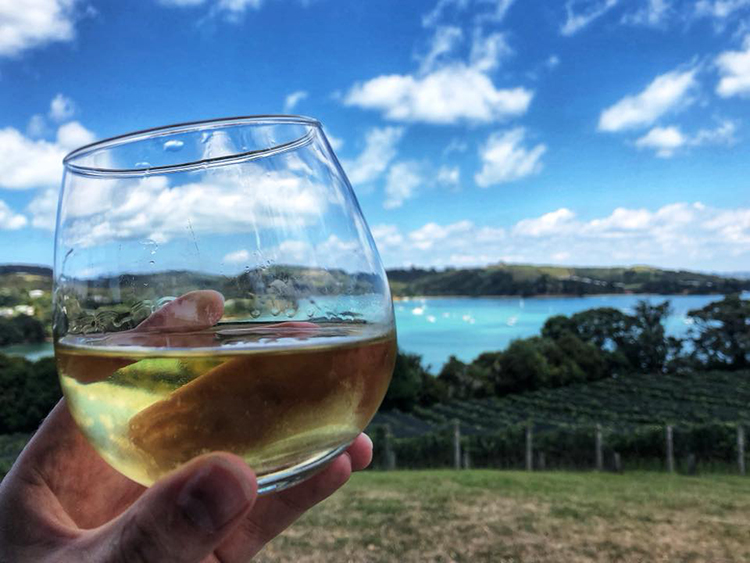 Glass of white wine and the view at Goldie Estate in Auckland, New Zealand