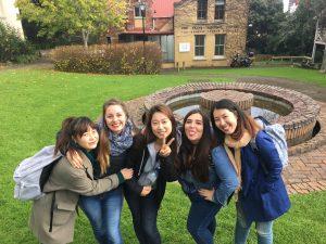 languages_international_review_ayami