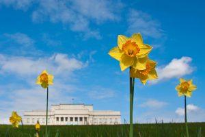 Spring at The Domain